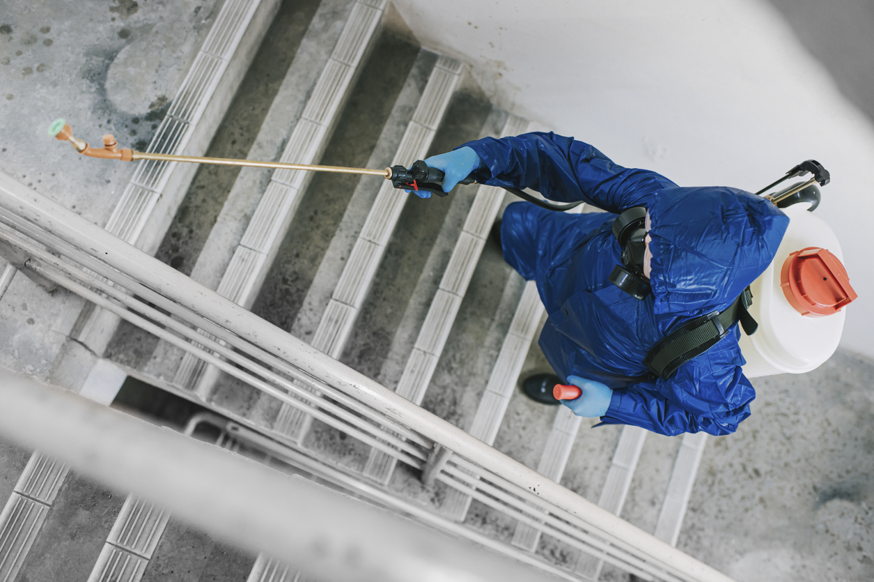 One woman in protective suit spraying and disinfecting the staircase exterminator pest control virus